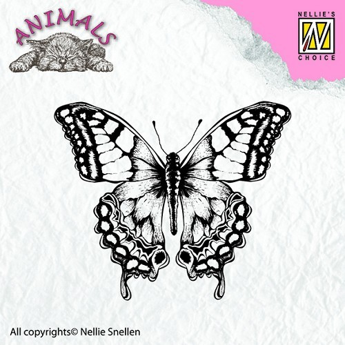 Animal Butterfly
