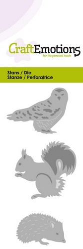 Owl-hedgehog-squirrel