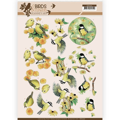 Birds & Flowers: Yellow Birds