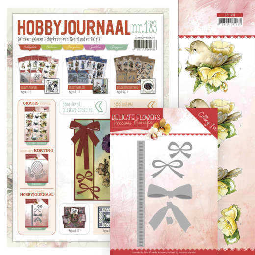 Hobbyjournaal 183 - Inclusief PM10180