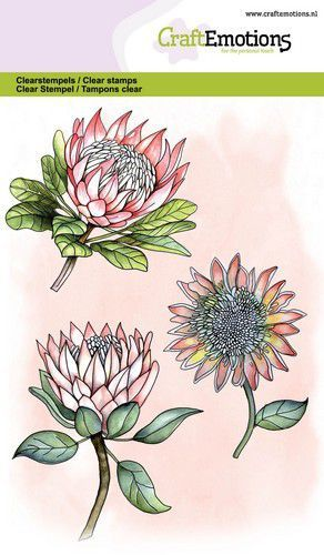 CraftEmotions clearstamps A6 - protea 3 bloemen GB