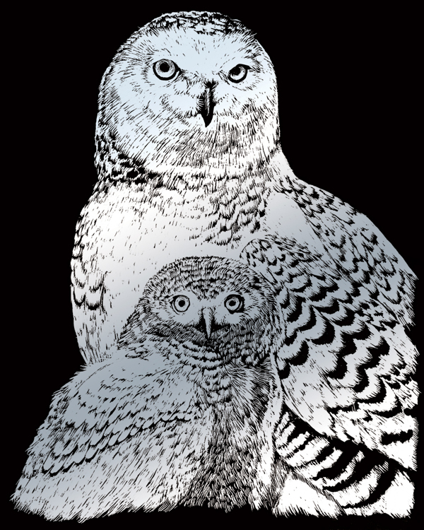 SILVER ENGRAVING SNOWY OWLS
