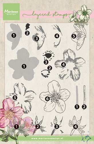 Clear stamp Tiny`s helleborus ( layering)